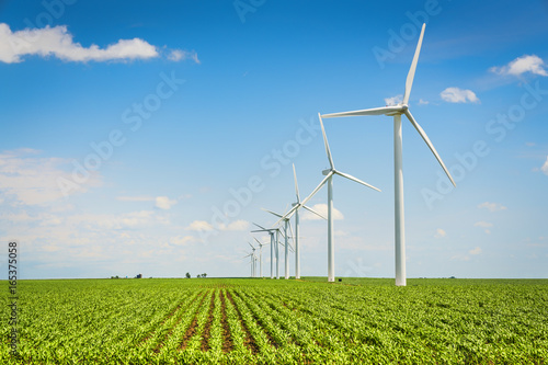 Fotografie, Obraz  Wind farm and countryside corn field, agriculture industry