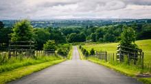 Country Lane In Rural Cumbria