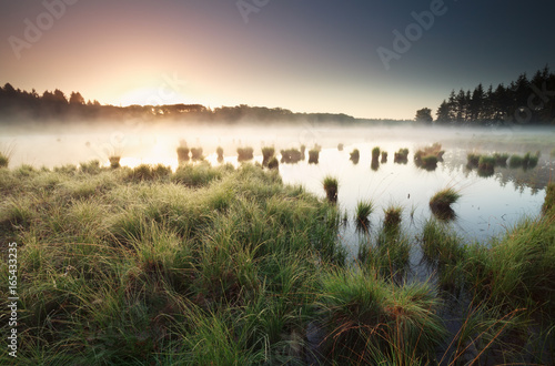 Carta da parati tranquil misty sunrise on wild lake