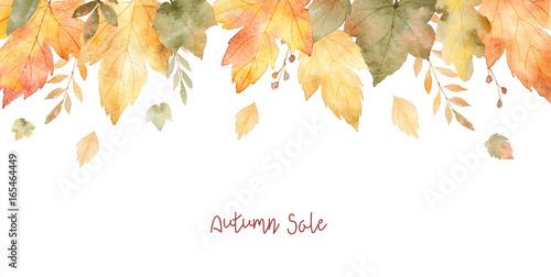 Akwarela sprzedaż transparent liści i gałęzi na białym tle.