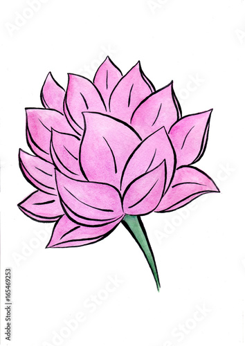 Lotus flower watercolor hand-drawn painting