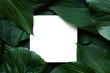 canvas print picture - Creative layout made of tropical leaves with blank paper card. Flat lay. mock up