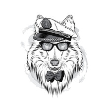 Cute Dog In A Captain's Cap. Charming Puppy. Vector Illustration. Collie.