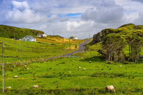 Foto op Aluminium Purper Rural landscape with village houses near the slieve league rocks. County Donegal. Ireland