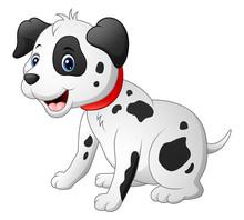 Cute Dalmatic Dog