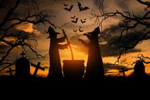 Witch In The Halloween Night, Concept Halloween.