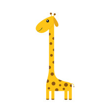 Giraffe With Spot. Zoo Animal....