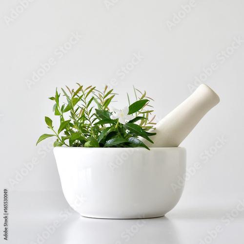 Alternative herbal medicine, Mortar with healing botanical herbs. Canvas Print