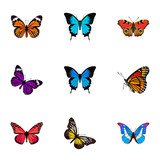 Realistic Bluewing, American Painted Lady, Common Blue And Other Vector Elements. Set Of Butterfly Realistic Symbols Also Includes American, Pink, Purple Objects.