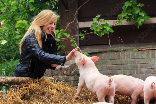 Cuadros en Lienzo  Young very blond girl having fun with the piglets in the petting zoo in spring