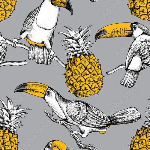 bezszwowy-wzor-z-ptakami-tukany-na-galaz