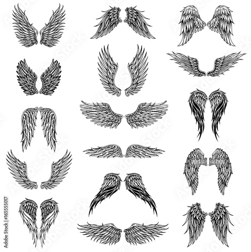 Foto  Wings graphic illustration