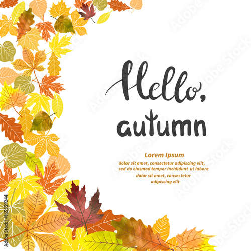 Beautiful autumn background with falling leaves. Place for text. Hello Autumn vector illustration. Wall mural