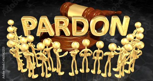 Photo Pardon Law Gavel Concept 3D Illustration