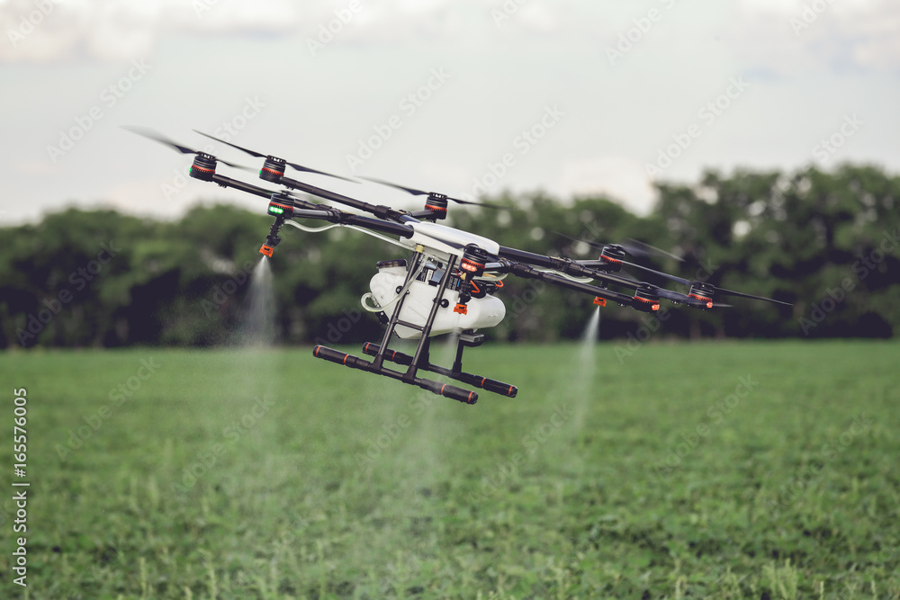 Fototapeta Agriculture drone fly to sprayed fertilizer on the rice fields. Industrial agriculture and smart farming