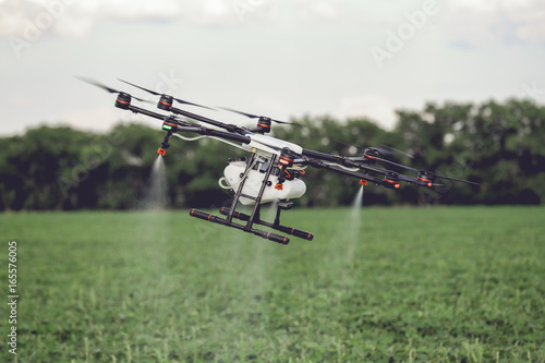 Fototapeta Agriculture drone fly to sprayed fertilizer on the rice fields. Industrial agriculture and smart farming obraz