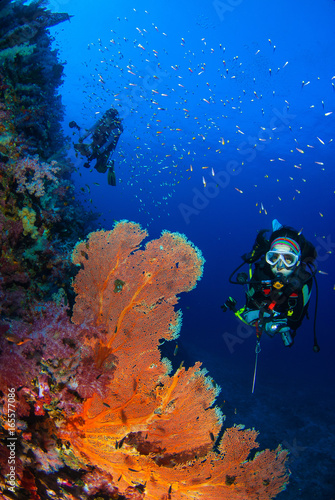 Wonderful underwater world with young woman scuba diving on a be Wall mural