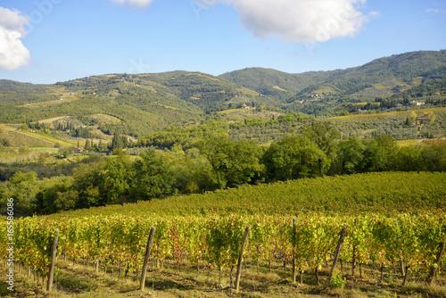 Fotobehang Wijngaard Tuscany vineyards, Chianti region, Italy
