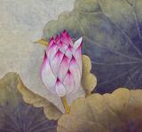 Pączek różowego lotosu - 165600200