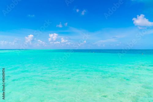 Wall Murals Ocean Beautiful tropical Maldives island with white sandy beach and sea .