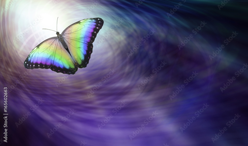Fototapety, obrazy: Symbolic Spiritual Release -  Beautiful multicoloured butterfly moving into the light depicting a departing soul