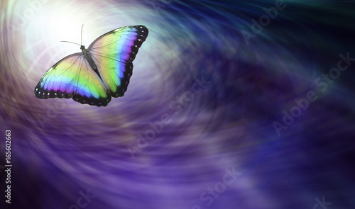 Poster Vlinder Symbolic Spiritual Release - Beautiful multicoloured butterfly moving into the light depicting a departing soul