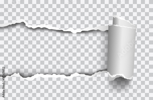 Fotomural Vector realistic torn paper with rollled edge on transparent background