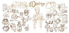 Hand Drawn Dairy Products Set