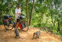 Cyclist Feeding Monkeys In Bali
