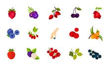 Wild Berries Icon Set