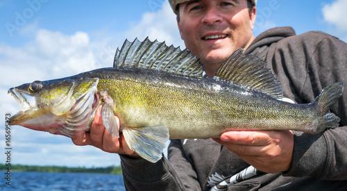 Closeup for walleye fishing trophy