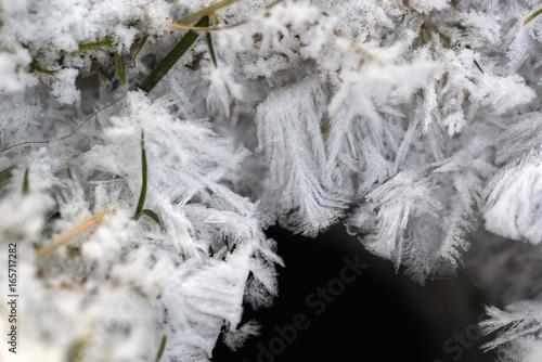 Fotografie, Obraz  Eiskristalle, Eisblume und Erdloch als Makro in frostig winterlicher rauhreifen