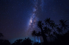Milkyway Galaxy Rise Above Coconut Tree. Image Contain Visible Noise Due To High Iso. Soft Focus Due To Wide Aperture And Long Expose.