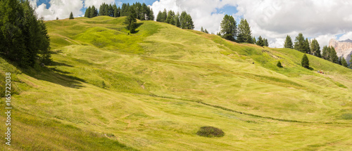 In de dag Heuvel Meadows at high altitudes forming gentle hills. Dolomites, Alta Badia, Sud Tirol, Italy