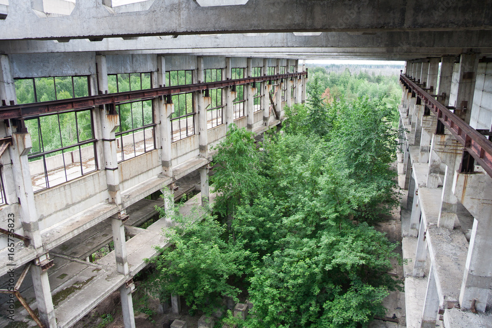 Concept Art Overgrown Ruins