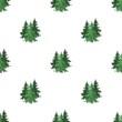 Canadian spruce. Canada single icon in cartoon style vector symbol stock illustration web.