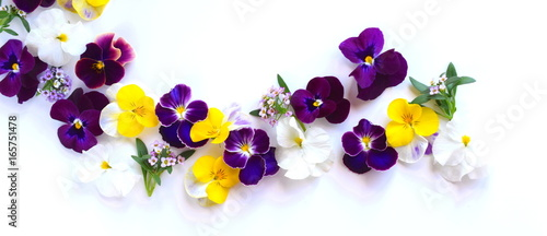 Stickers pour porte Pansies 春の花 花びら 室内