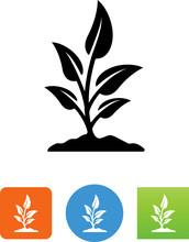 Growing Plant Icon - Illustration