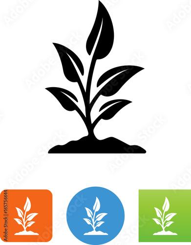 Fotografie, Obraz  Growing Plant Icon - Illustration