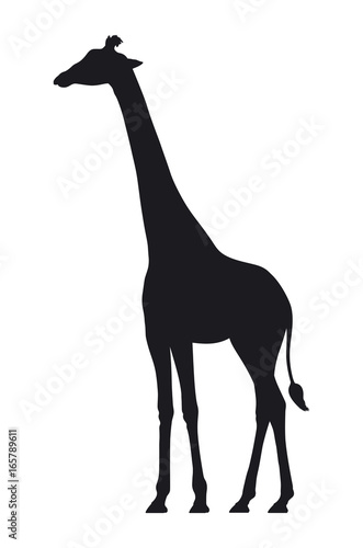 Photo Vector silhouette of a giraffe on white background