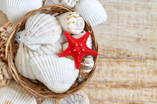 Various Seashells In Woven Bas...