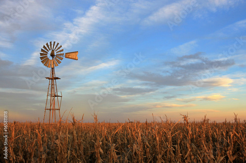 Obraz Texas style westernmill windmill at sunset, Argentina, South America - fototapety do salonu