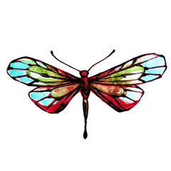 beautiful dragonfly, butterfly,watercolor,isolated on a white