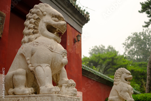 Foto op Canvas stone lions