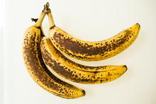 Three Bananas, Studio Shot