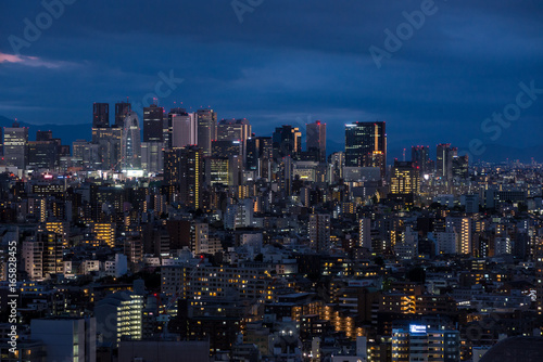 Poster Tokyo Night view of Tokyo 東京の夜景2