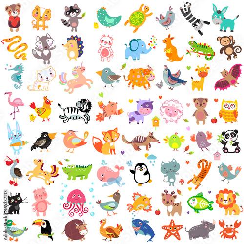 Animals64 Poster