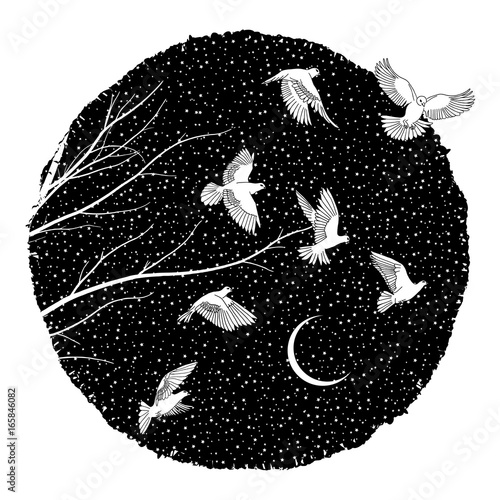 Artistic ink illustration of white doves flying at night Canvas Print