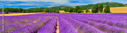 Stickers pour porte Lavande Panorama of lavender field