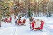 Reindeer caravan safari and people forest Lapland Northern Finland